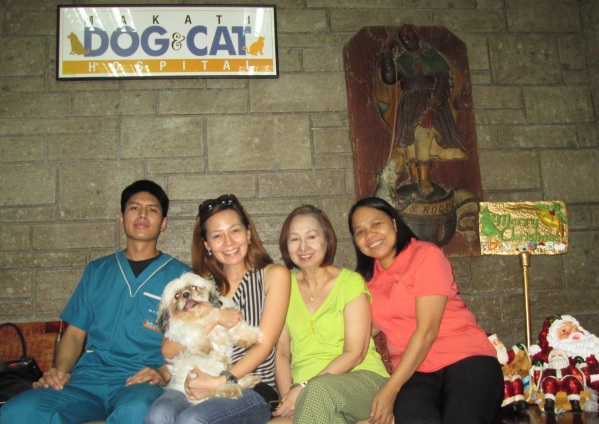 Makati Dog and Cat Hospital (2)